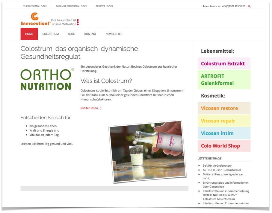 Webshop mit Affiliate Partner Tracking Software